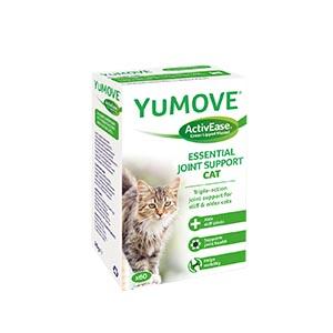 ízületvédő cicának