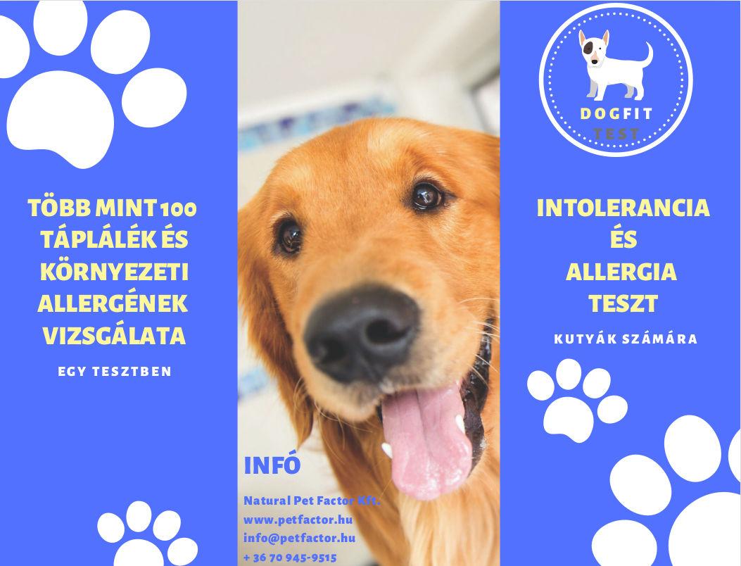 dogfit kutya allergia teszt