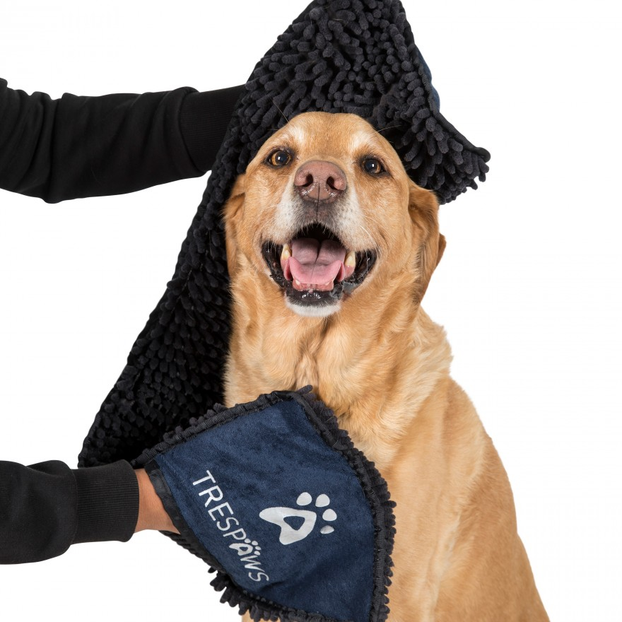 törölköző kutyáknak
