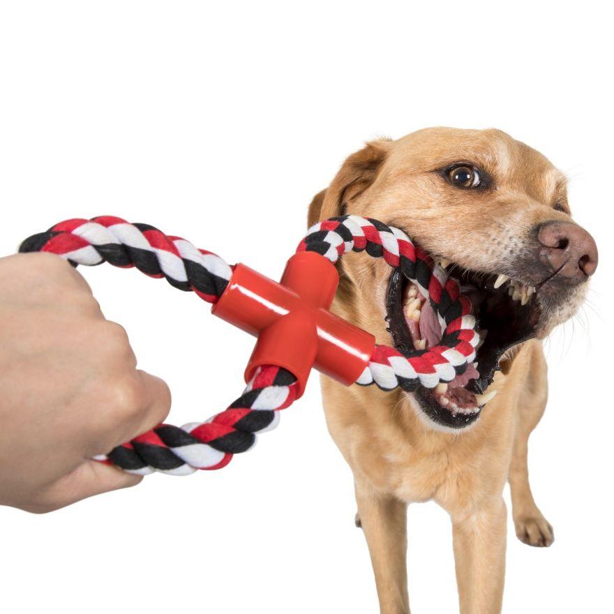 kötél játék kutyáknak
