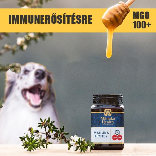 Immunerősítés kutya
