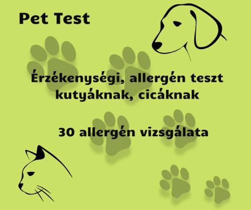 kutya allergia teszt