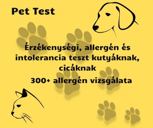 kutya allergiateszt